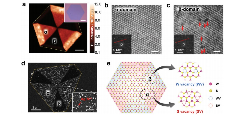Fig. 1. Heterogeneous defect domains in hexagonal WS2 single crystals grown by chemical vapor deposition.[6]