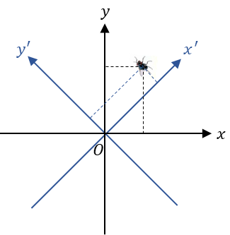 Fig. 3. The choice of a coordinate system is subjective, but the position of the firefly is objective. (좌표의 선택은 주관적이지만, 파리의 위치 자체는 객관적인 대상이다.)