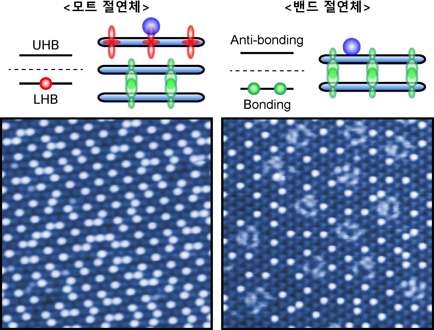 염한웅 단장 연구팀이 주사터널현미경으로 관측한 두 개의 서로 다른 양자 상태를 가지는 1T-TaS2 표면에서 일어나는 포타슘 흡착.