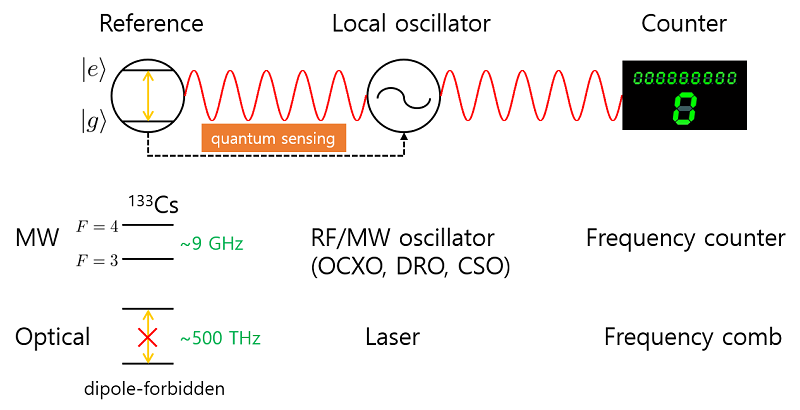 Fig. 1. Schematic diagram of a microwave (MW) and an optical clock. RF: radio frequency, OCXO: oven-controlled crystal oscillator, DRO: dielectric resonator oscillator, CSO: cryogenic sapphire oscillator