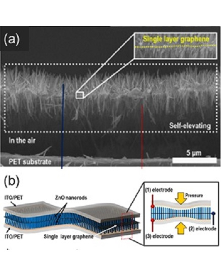 Fig. 4. (a) SEM images of epitaxial double hetero-structures on graphene. (b) Schematic of the device in which epitaxial double heterostructures are installed from [14]. (Copyright 2015 Elsevier)