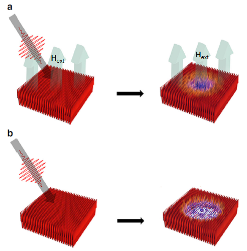 Fig. 6. Magnetic cooling by external magnetic field with femtosecond laser pulse pumping.[9]