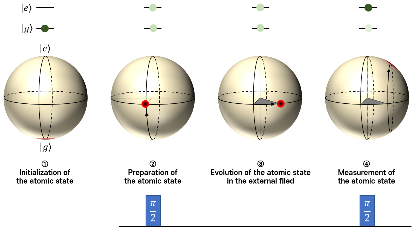 Fig. 7. Sequence of quantum sensing using atoms. Each of electronic states (top) and Bloch spheres (middle) represent a quantum state at each step. The Bloch sphere is used to show the phase evolution of the atomic state in the external field. The electromagnetic pulse which can rotate the state by ¼/2 on the Bloch sphere is often used to prepare the superposition state and make the final measurement of the atomic state (bottom).