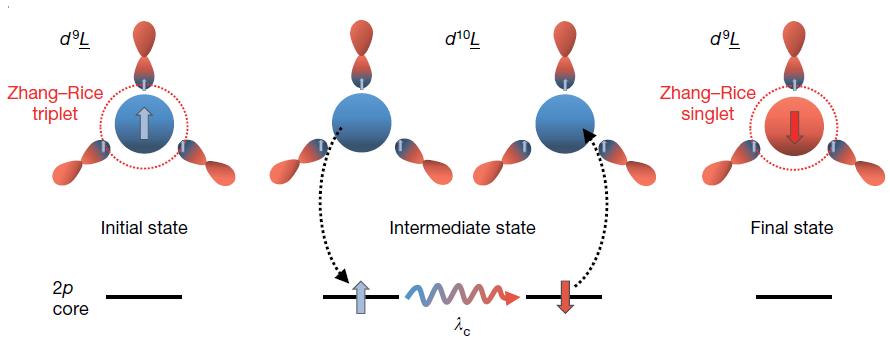 그림 1. Zhang-Rice singlet 상태로의 전이를 나타내는 RIXS 과정의 모식도. (좌측) 초기 상태의 Zhang-Rice triplet 상태. (가운데) 2p 코어 전자가 중간 상태에서 유도되는 강한 스핀-궤도 결합(spin-orbit coupling)으로 인해 스핀이 반전된다. (우측) RIXS 과정 후 최종 상태의 Zhang-Rice singlet. 각 그림의 화살표는 스핀이 위와 아래인 상태를 말한다.