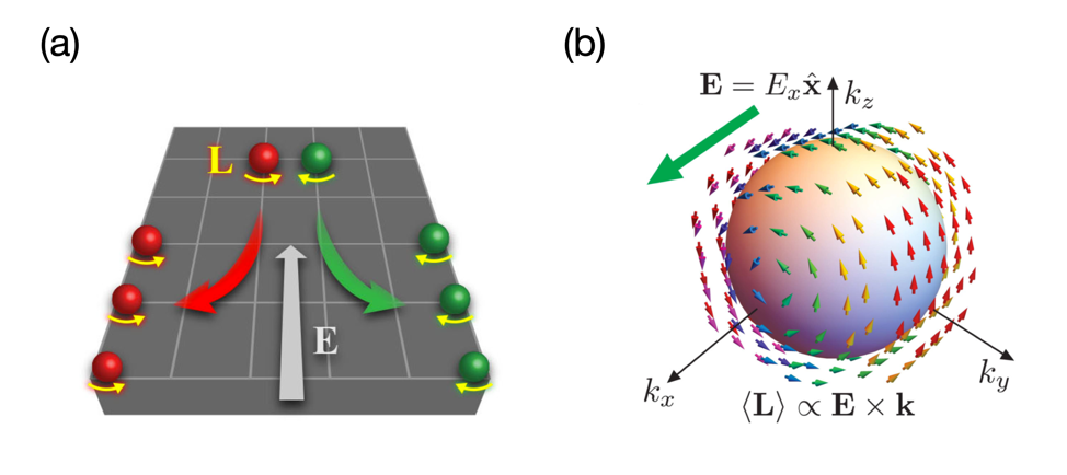 Fig. 3. (a) Schematic illustration of orbital Hall effect . (b) In three-dimensional systems, an external electric field E induces orbital angular momentum along the direction of E×k. Here, the arrow represents the direction of the angular momentum, and color is simply for visual aid. Figures taken from Refs. [4] and [7].