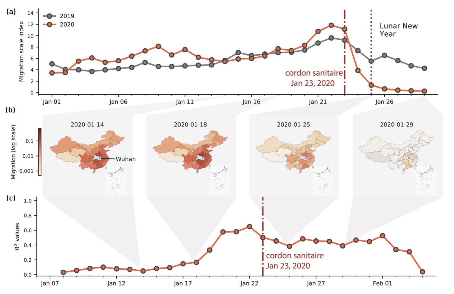 Fig. 3. Mobility and spread of COVID-19 during January, 2020 in China (Fig. 2 in Ref. [24]). (a) Human mobility record provided by Baidu Inc., which shows a dramatic drop after January 23, 2020 (red line) - when travel restriction is started - compared to the same time in 2019 (grey line). (b) Relative movements of people from Wuhan to other regions in China. (c) Correlation of daily positive cases between Wuhan and other regions, weighted by mobility scale.
